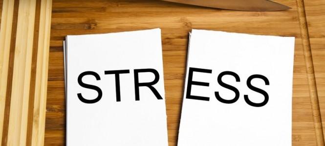 216-Stressy-i-nadpochechniki